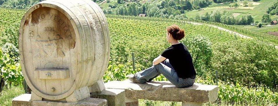 Fantastische Aussichten auf dem Weinbau- und Skulpturenweg Schnait
