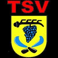 TSV Strümpfelbach 1912 e.V.