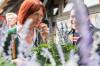 Frau riecht an Lavendel