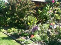 Garten von Hartmut und Ilse Renz