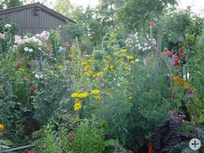 Garten rechts hinten