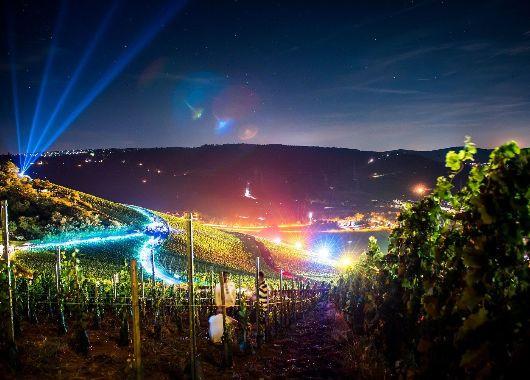 Beleuchtete Weinberge bei Nacht